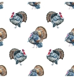 Turkey pattern vector image