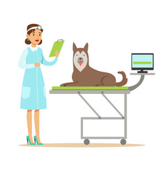 smiling female veterinarian examining dog in vet vector image