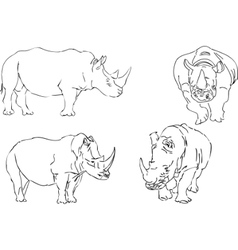 illustration sketch of rhino vector image vector image