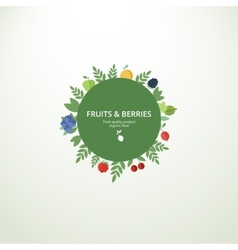 Label with fresh fruits and berries vector image vector image