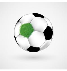 Grass on Soccer Ball vector image
