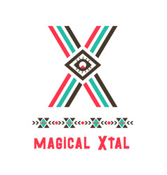 Magical xtal logo vector
