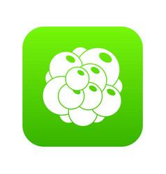 ovary icon digital green vector image
