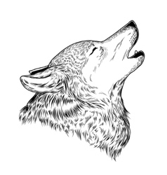 A howling wolf vector