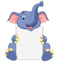 Cute elephant holding blank sign vector image vector image