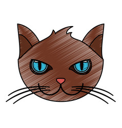 Color pencil cartoon front view face cat animal vector