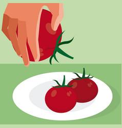Hand grabbing tomato vector