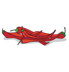 isolate ripe red hot chili pepper vector image