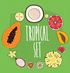Set of isolated tropical fruits in cross sections vector