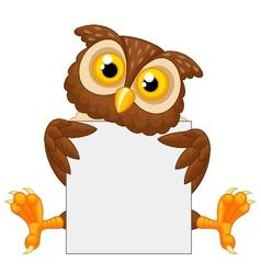 Cute owl cartoon holding blank sign vector image
