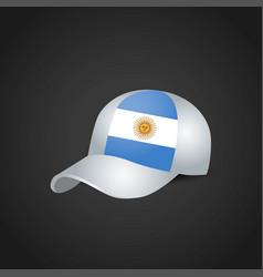 argentina flag design vector image