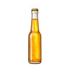 Bottle of cold beer sketch vector