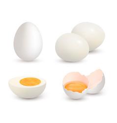 Eggs realistic natural healthy farm fresh food vector