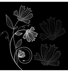 Floral flower greeting card vector image