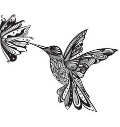 Flower hummingbird colibri art entangle doodle vector