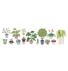 home plants houseplants set vector image
