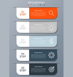 Infographic modern with 5 options step vector