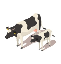 Isometric small and big cow vector