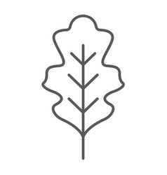 Oak leaf thin line icon nature and botany vector