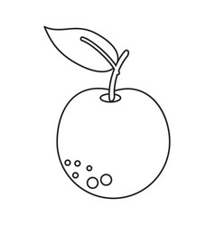 orange citrus fruit icon thin line vector image