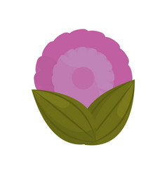 purple flower bud with leaves vector image