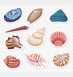 Realistic sea shells stickers sset vector