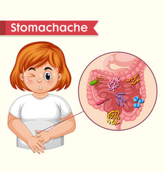 Scientific medical stomach ache vector