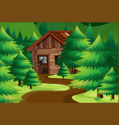 old wooden cottage in the woods vector image vector image