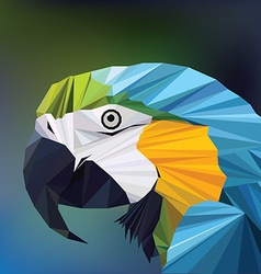 3d origami low polygon macaw parrot vector