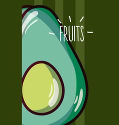 Avocado fruits cartoon vector