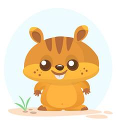 cartoon marmot vector image