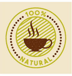 coffee stevia natural sweetener vector image