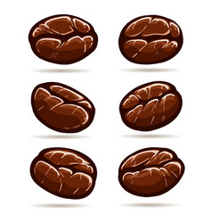Colorful coffee beans set vector