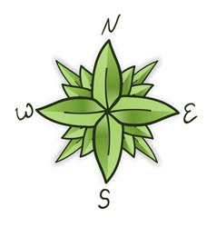 compass rose made of green leaves eco travel vector image