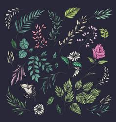 floral and leaf summer pattern vector image