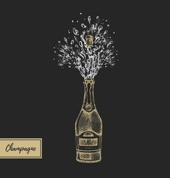 hand drawing champagne bottle with splash vector image