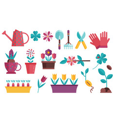 home gardening and seedling icons vector image