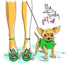 legs fashion girl and little chihuahua vector image