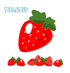 organic fresh strawberry on white background xa vector image