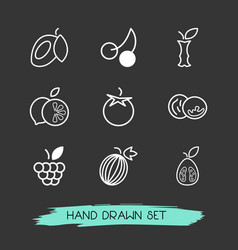 set of fruit icons line style symbols with guava vector image