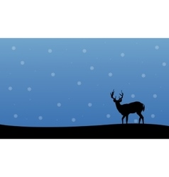 Silhouette of deer winter Christmas scenery vector image