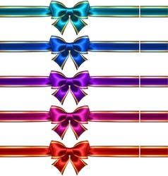Set of silk bows with ribbons and golden edging vector image vector image