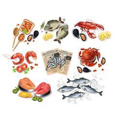 sea food set collection realistic salmon vector image