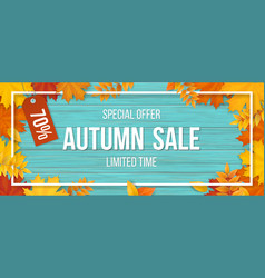 Autumn sale fallen maple leaves frame wooden vector