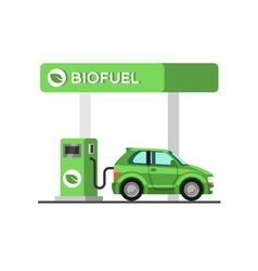 Biofuel petrol station Green energy vector image