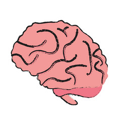 Brain cartoon draw vector