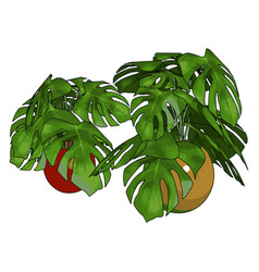green plants in pot on white background vector image
