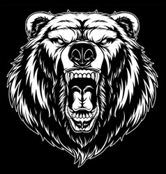 Head a ferocious grizzly bear vector