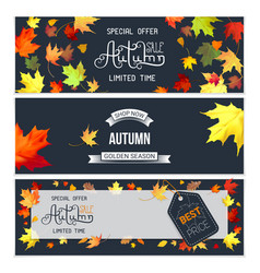 set of horizontal posters for autumn sale vector image