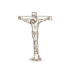 Jesus christ hanging on the cross vector
